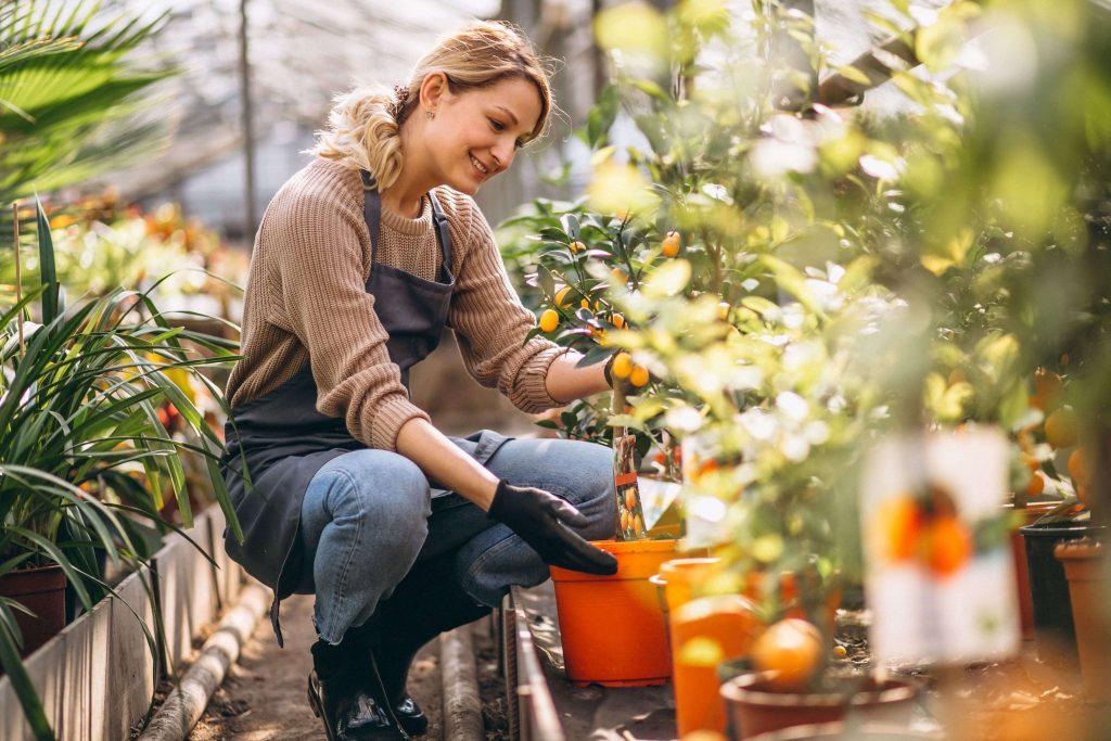 Junge Frau in Latzhose pflegt die Pflanzen in einem Gewächshaus